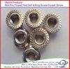 Wholesale Class4.8 Carbon Steel Hexagon Flange Nut
