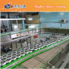 Pet Bottle Conveyor System (CM-10)