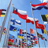 3X5 Hot Sale 100% Polyester Fireproof Common Country Flags