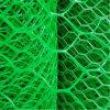 Good Quality Hexagonal Plastic Plain Netting