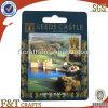 High Quality Hot Sale Fridge Magnet (FDOT3820F)