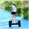 China Factory Stand up Electric Trike Scooter with 2 Wheels and CE/FCC/RoHS Approved