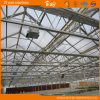 Durable Multi-Span Glass Greenhouse for Planting Vegetables