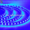 SMD5050 Blue Strip Rope Light