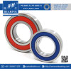 6309 High Temperature Deep Groove Ball Bearing for Oven Machinery