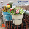 Wall Mounting Type Iron Flower Stand for Balcony