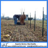 Hot-Dipped Galvanized Steel Metal T Fence Post for Field Fence