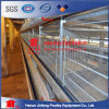China Best Design Automatic H Frame Battery Layer Chicken Cage