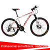 China High Quality 24 Speed Disc Brake Mountain Bike/Bicycle