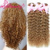 Hot Selling Lili Beauty Kinky Curly Brazilian Virgin Hair