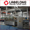 China Low Price Small Capacity Automatic Green Tea Bottling Machine