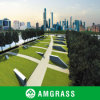 Polymethylene Material Professional Synthetic Turf&Artificial Turf (AMUT327-25D)