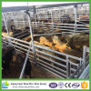 Wholesale Bulk Portable Gavanized Cattle Panel