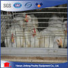 Jingfeng Design Chicken Cage for Sale at Low Price