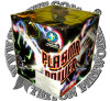 Plasma Power 36 Shots Cake Fireworks