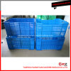 Plastic Vegetable Crate Mold with Four Versions
