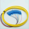 SC Bundle Pigtail SC/APC Type 12 Cores Fiber Optic Pigtail