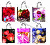 Beautiful Flower Printed Paper Gift Bag (JL02)