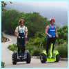 Double Battery Ecorider Two Wheels Scooter Electric Bike Dirt Bike