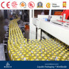 Stable Juice Wahing Filling and Capping Machine