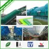 High Quality Building Decorative Material Lexan Polycarbonate Roofing Sheets Applications