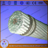 Direct Manufacturer AAC Conductor