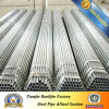 ERW Hot Rolled Pre Galvanized Rhs Scaffold Steel Pipe