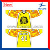 Hot Selling Sublimate College League Ice Hockey Jersey