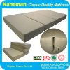 3 Folding Thick Foam Mattress