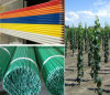 FRP Rod Fiber Glass Vineyard Grape Stakes
