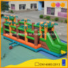 Coco Sphere Obstacle Iflatable Slide Game with Cheap Price (AQ16213)