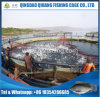 Large Capacity Tilapia Farming Cage, Circular Fish Cages