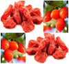 2015 New Harvest Goji Berry Wolfberry, Ningxia Goji Berry Fruit
