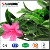 Fake Product Ideas Outdoor Artificial Plastic Flowers Hedge Fences