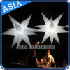 Party/Event Ceiling Decoration Inflatable Star / LED Star Light