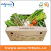 Fashion Design Corrugated Food Box Vegetable Packaging Box (AZ122822)