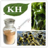 High Natural Brown Alga Extract Fucoxanthin 20%