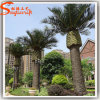 Outdoor Decoration Artificial Fake Plastic Date Palm Tree