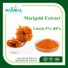 Marigold Flower Extract Lutein 5---80% Zeaxanthin 5%-40% Plant Extract