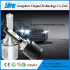CREE LED Spot Head Lamps, Auto Headlight H7 LED Auto Lamp for Car