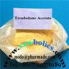Steroid Hormone Trenbolone Acetate Powder Tren Acetate