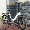 En15194 Electric Bike Folding with 10ah Lithium Battery
