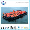 Top Grade Best Sell Aor-65 Open-Reversible Inflatable Liferaft