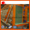 Jinfeng Hot Sell a Type Chicken Cage System