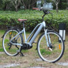 26inch Middle Motor City Electric Bike