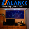 Halance Fiber Optic Ceiling Light