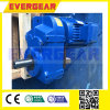 Parallel Shaft Mount Gear Reducer