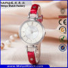 Fashion Leather Strap Casual Classic Quart Ladies Wrist Watch (Wy-063B)