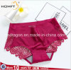 Chinlon Lace Back Seamless Stealth Comfortable Non-Trace Briefs Sexy Classic Version Underwear Panties