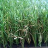 Artificial Grass for Garden with 40mm Height